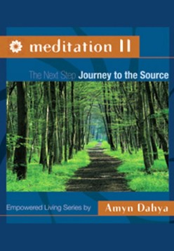 Meditqtion vol 2, book by Amyn Dahya